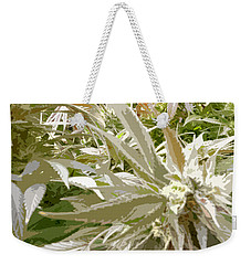Weekender Tote Bag featuring the photograph Ladyflower Hemp #1 by Ahma's Garden