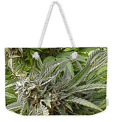 Weekender Tote Bag featuring the photograph Larry Og #2 by Ahma's Garden