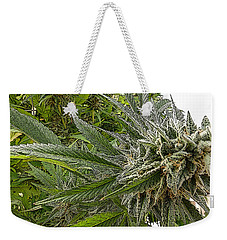 Weekender Tote Bag featuring the photograph Larry Og #3 by Ahma's Garden