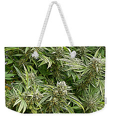 Weekender Tote Bag featuring the photograph Larry Og #4 by Ahma's Garden