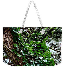 Weekender Tote Bag featuring the photograph Leafy Tree Trunk by Lukas Miller