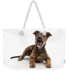 Weekender Tote Bag featuring the photograph Life's A Bark by Warren Photographic