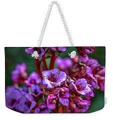 Weekender Tote Bag featuring the photograph Lilac #h9 by Leif Sohlman