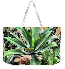 Weekender Tote Bag featuring the photograph Lion's Tail Agave by James Fannin
