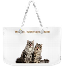 Weekender Tote Bag featuring the photograph Lord, What Fools These Moggies Be by Warren Photographic