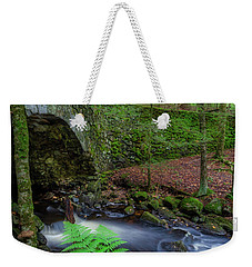 Weekender Tote Bag featuring the photograph Lost Bridge by Bill Wakeley