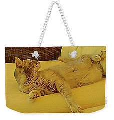 Weekender Tote Bag featuring the photograph Lounging Around by Dorothy Berry-Lound
