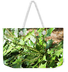 Weekender Tote Bag featuring the photograph Mahonia Buds And Leaves by MM Anderson