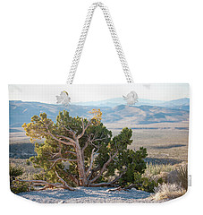 Mesquite In Nevada Desert Weekender Tote Bag