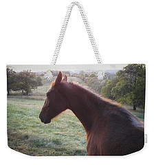 Weekender Tote Bag featuring the photograph Misty by Carl Young