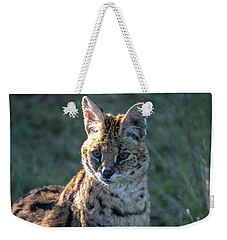 Morning Lit Serval Cat Weekender Tote Bag