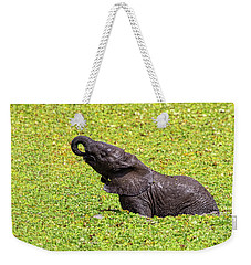 Weekender Tote Bag featuring the photograph Mud Bath by Kay Brewer