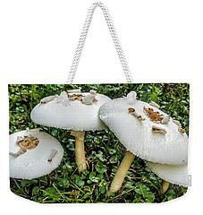 Weekender Tote Bag featuring the photograph Mushroom Quartet by Vincent Autenrieb