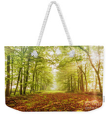 Neither Summer Nor Winter But Autumn Light Weekender Tote Bag