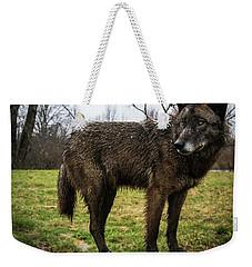 Niko Weekender Tote Bag