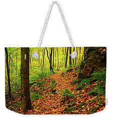 Weekender Tote Bag featuring the photograph North Side Of Mount Greylock's At 2 by Raymond Salani III