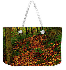 Weekender Tote Bag featuring the photograph North Side Of Mount Greylock's At by Raymond Salani III