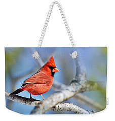 Weekender Tote Bag featuring the photograph Northern Cardinal Scarlet Blaze by Christina Rollo