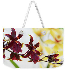 Weekender Tote Bag featuring the photograph Odontocidium Wildcat Bobcat Flowers  by Tim Gainey