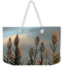 Ornamental Pampas Grass Weekender Tote Bag