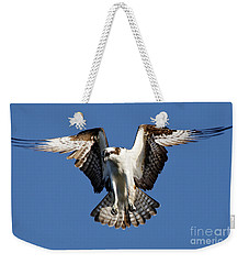 Weekender Tote Bag featuring the photograph Osprey by Sue Harper