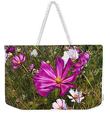 Weekender Tote Bag featuring the photograph Painted Cosmos by Brian Eberly