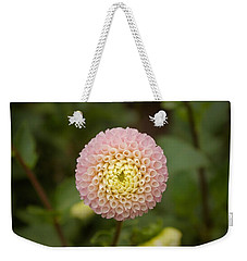 Weekender Tote Bag featuring the photograph Petite Pink by Brian Eberly