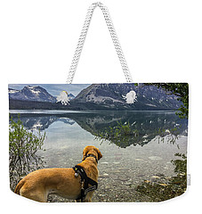 Weekender Tote Bag featuring the photograph Photo Dog Jackson At Glacier by Matthew Irvin