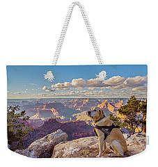 Weekender Tote Bag featuring the photograph Photo Dog Jackson At The Grand Canyon by Matthew Irvin