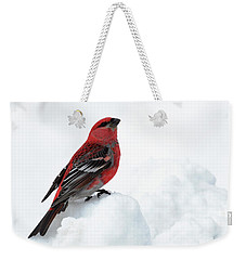 Weekender Tote Bag featuring the photograph Pine Grosbeak In The Snow by Susan Rissi Tregoning