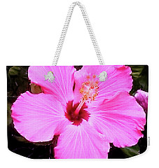Weekender Tote Bag featuring the photograph Pink Hibiscus by James Fannin