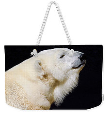 Weekender Tote Bag featuring the photograph Polar Bear by Dan Miller