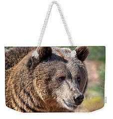 Portrait Of A Female Grizzly Bear Weekender Tote Bag