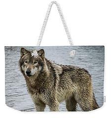 Posing By The Water Weekender Tote Bag