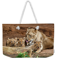 Weekender Tote Bag featuring the photograph Pride Of The Pride 6114 by Donald Brown