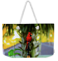 Proud Male Cardinal Weekender Tote Bag