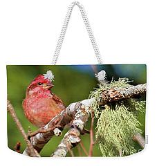 Purple Finch Weekender Tote Bag