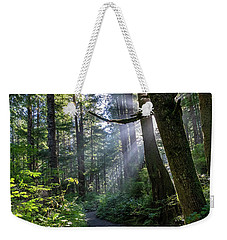 Weekender Tote Bag featuring the photograph Rain Forest At La Push by Ed Clark