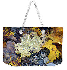 Weekender Tote Bag featuring the photograph Rainy Autumn Day by Mike Murdock