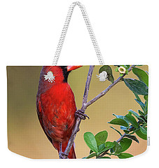 Red All Over Weekender Tote Bag