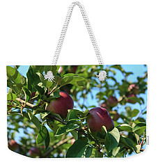 Weekender Tote Bag featuring the photograph Red Apples In The Apple Tree by Tatiana Travelways
