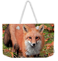 Weekender Tote Bag featuring the photograph Red Fox by Debbie Stahre