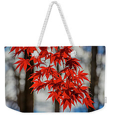 Weekender Tote Bag featuring the photograph Red Leaves by Cindy Lark Hartman