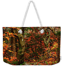 Weekender Tote Bag featuring the photograph Red Oaks And At Blaze Vertical by Raymond Salani III