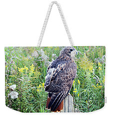 Weekender Tote Bag featuring the photograph Red-tailed Hawk On Fence Post by Rick Veldman