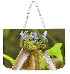 Weekender Tote Bag featuring the photograph Reeds Bully by Debbie Stahre