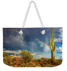 Weekender Tote Bag featuring the photograph Respite From The Storm by Rick Furmanek