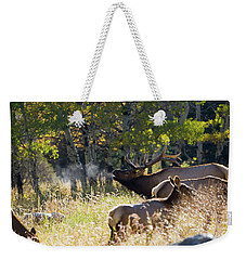 Weekender Tote Bag featuring the photograph Rocky Mountain Bull Elk Bugeling by Nathan Bush