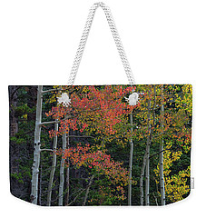 Weekender Tote Bag featuring the photograph Rocky Mountain Forest Reds by James BO Insogna