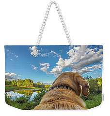 Weekender Tote Bag featuring the photograph Ross Pond Morning by Matthew Irvin